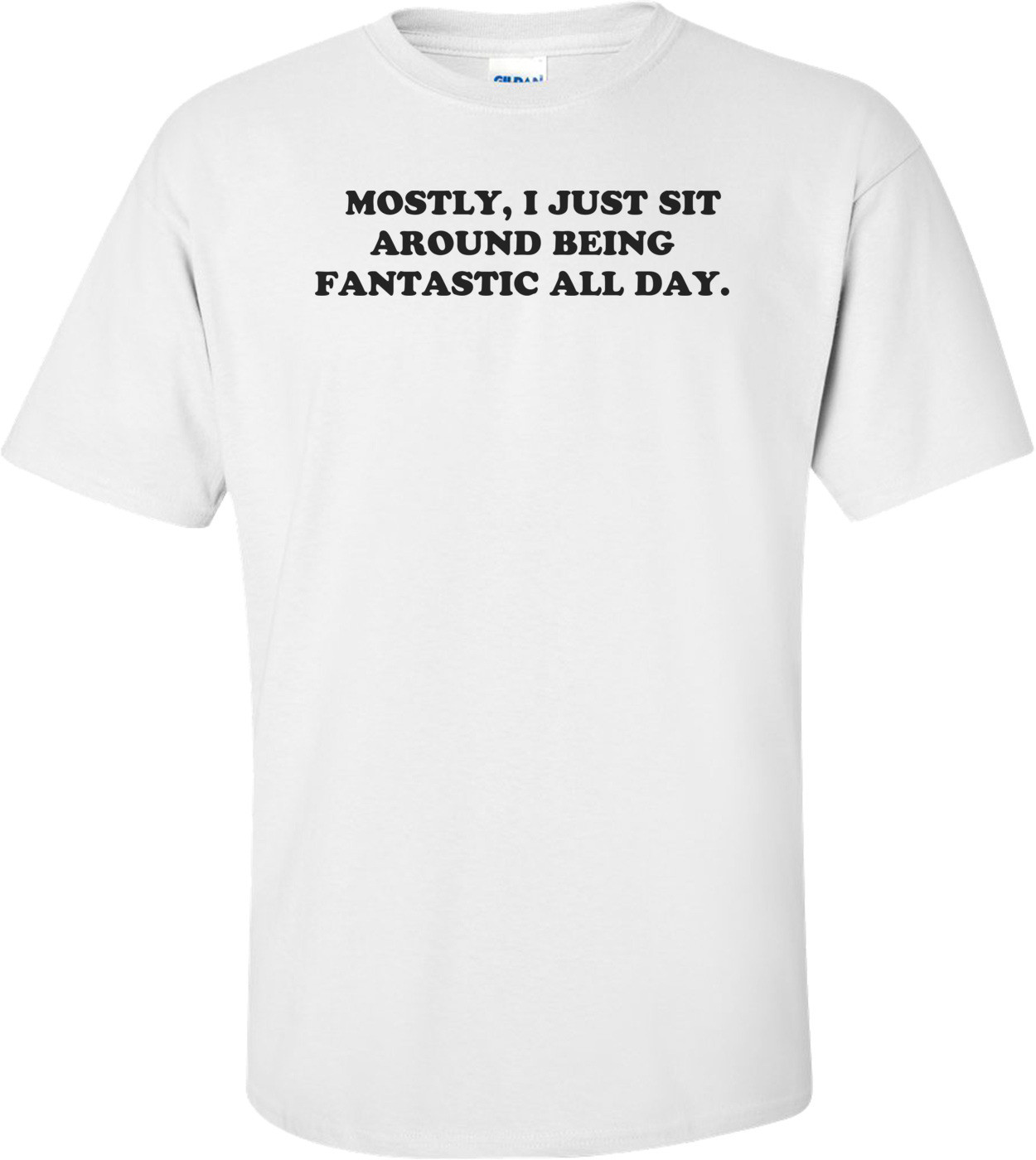 MOSTLY, I JUST SIT AROUND BEING FANTASTIC ALL DAY. Shirt