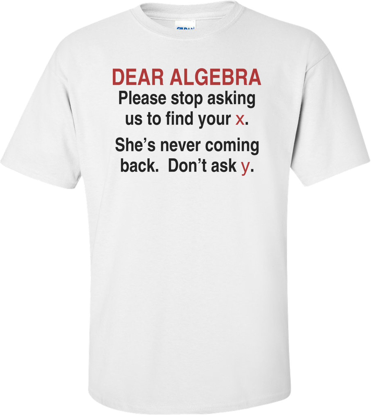 Dear Algebra...  Shirt
