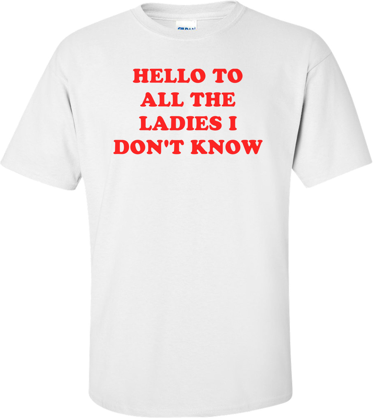 HELLO TO ALL THE LADIES I DON'T KNOW Shirt