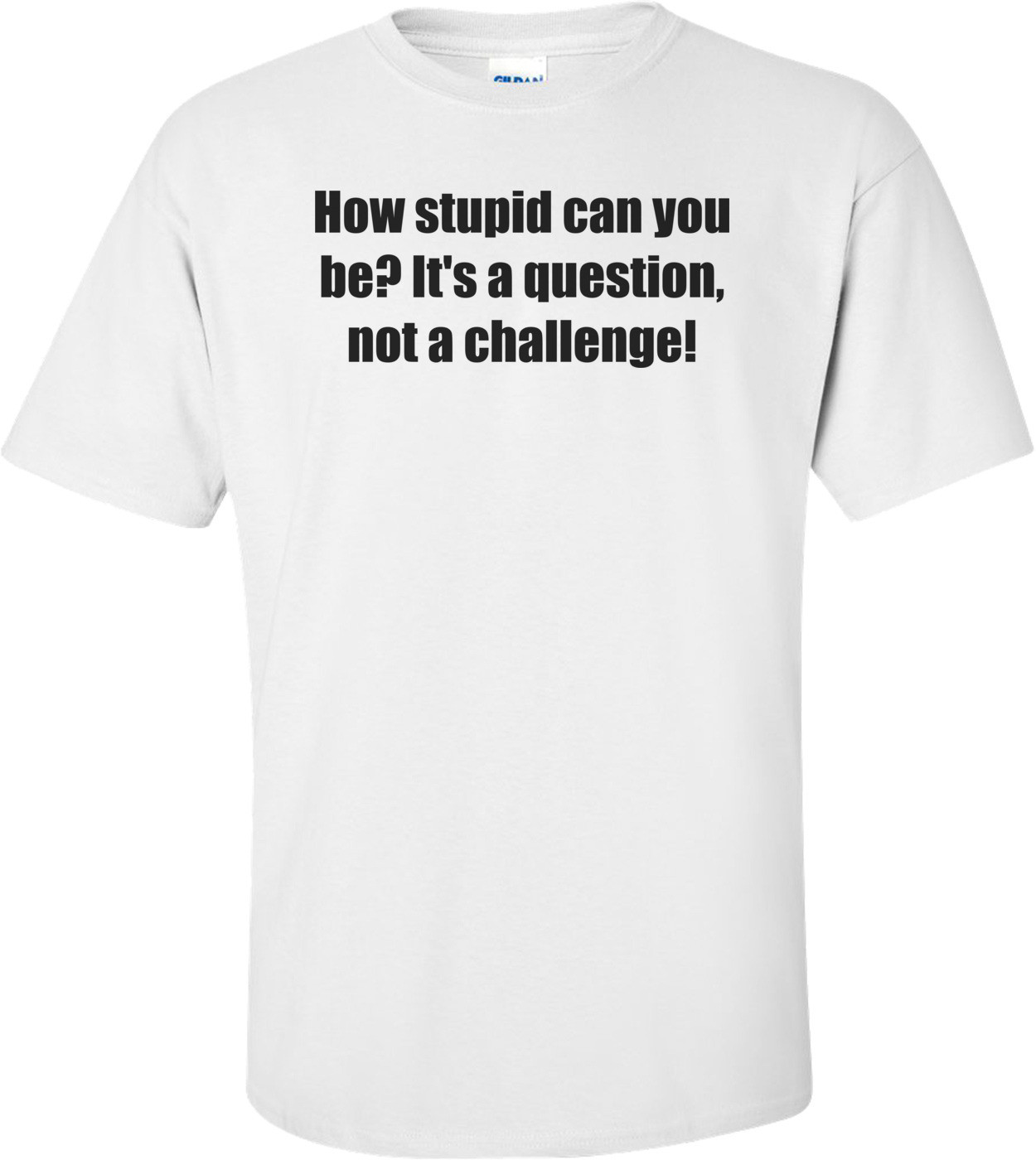 How stupid can you be? It's a question, not a challenge! Shirt
