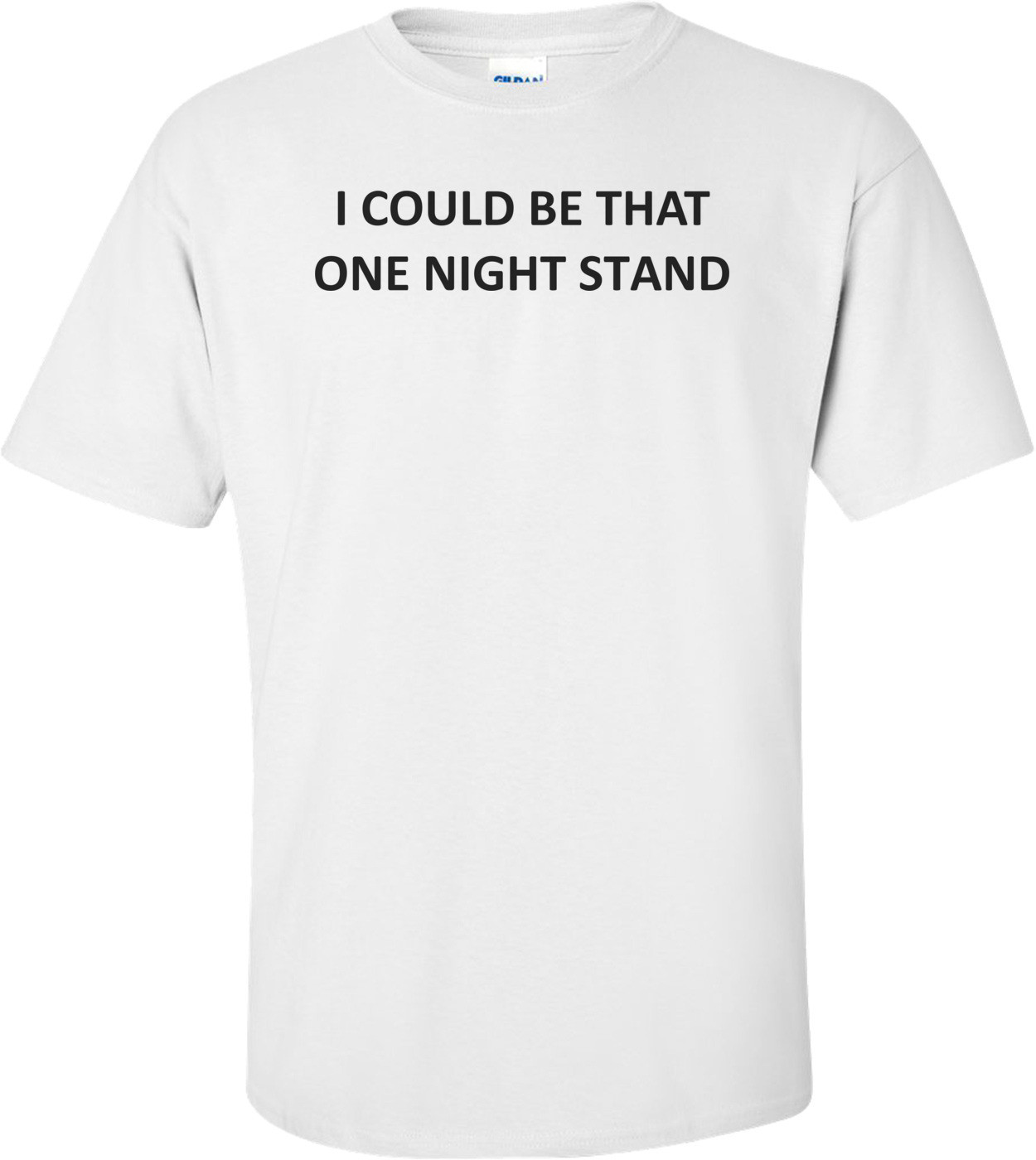I COULD BE THAT ONE NIGHT STAND Shirt