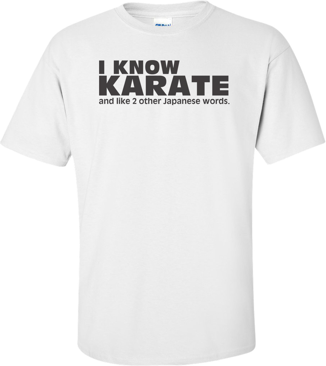 I Know Karate, And Like 2 Other Japanese Words T-shirt