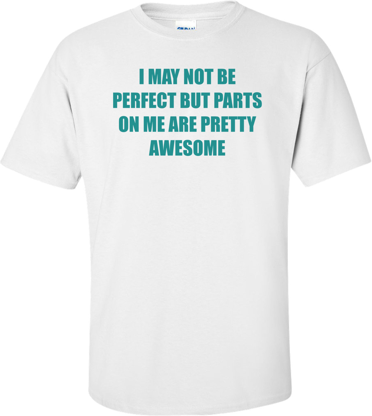 I MAY NOT BE PERFECT BUT PARTS ON ME ARE PRETTY AWESOME Shirt