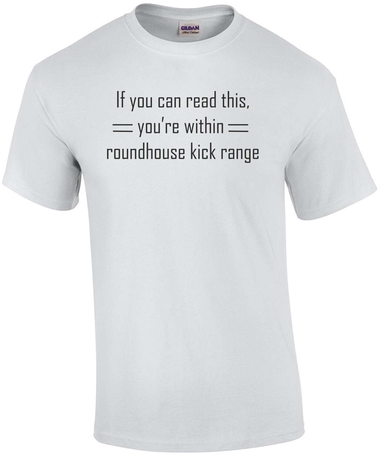 If You Can Read This, You're Within Roundhouse Kick Range T-Shirt