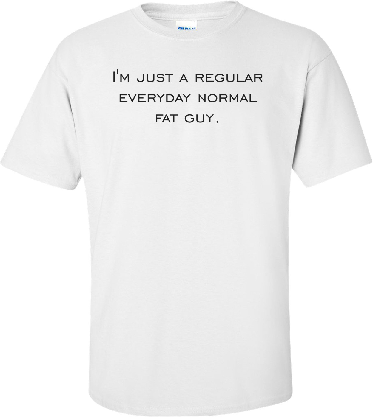 I'm just a regular everyday normal fat guy. Shirt