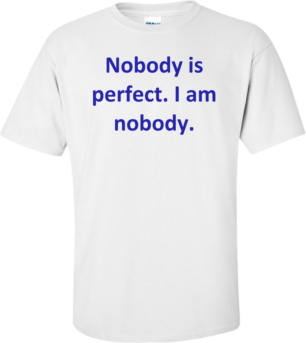 Nobody is perfect. I am nobody. Shirt