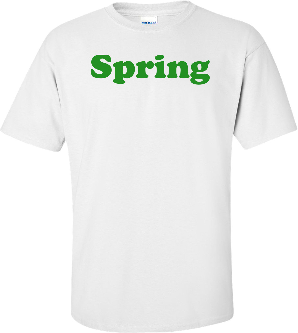 Spring - Maternity Shirt