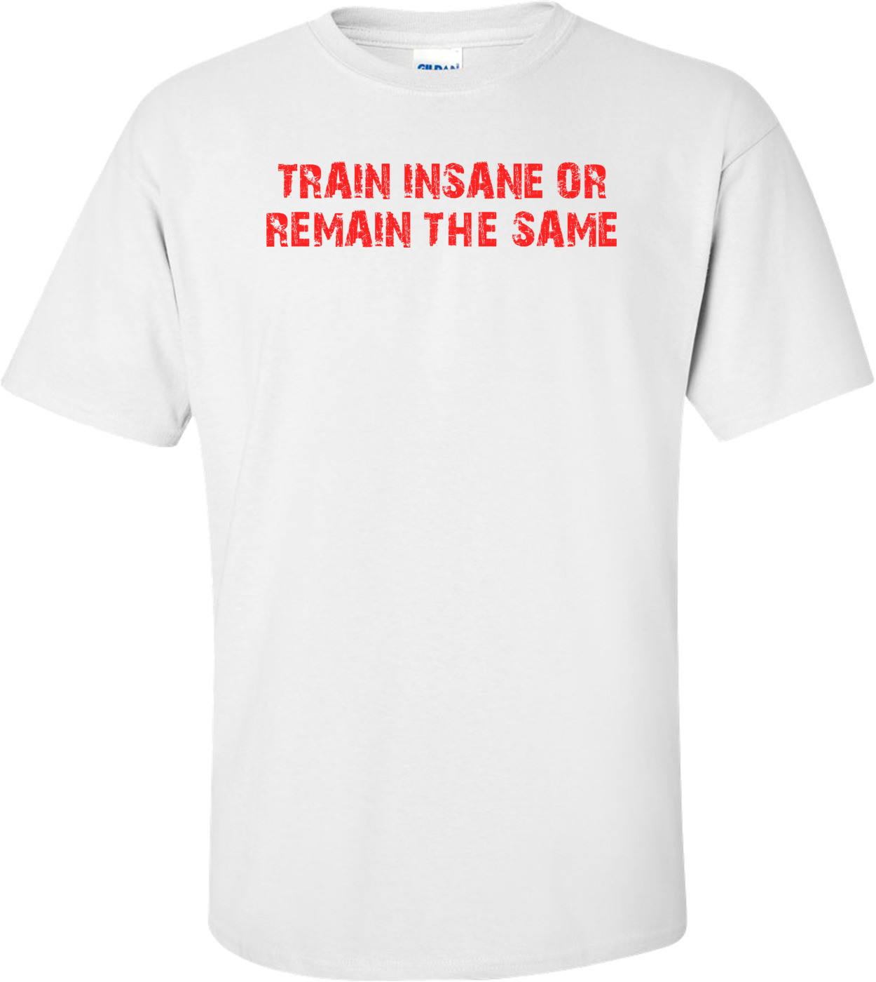 TRAIN INSANE OR REMAIN THE SAME Shirt