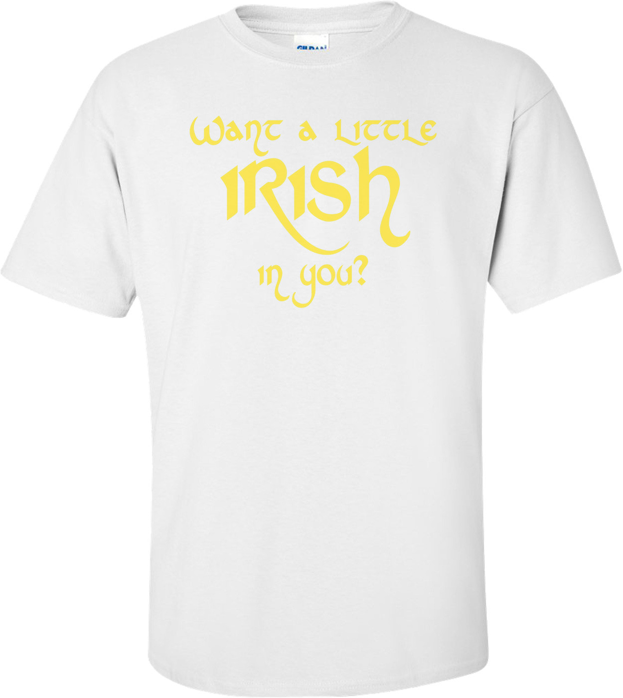 Want A Little Irish In You Shirt