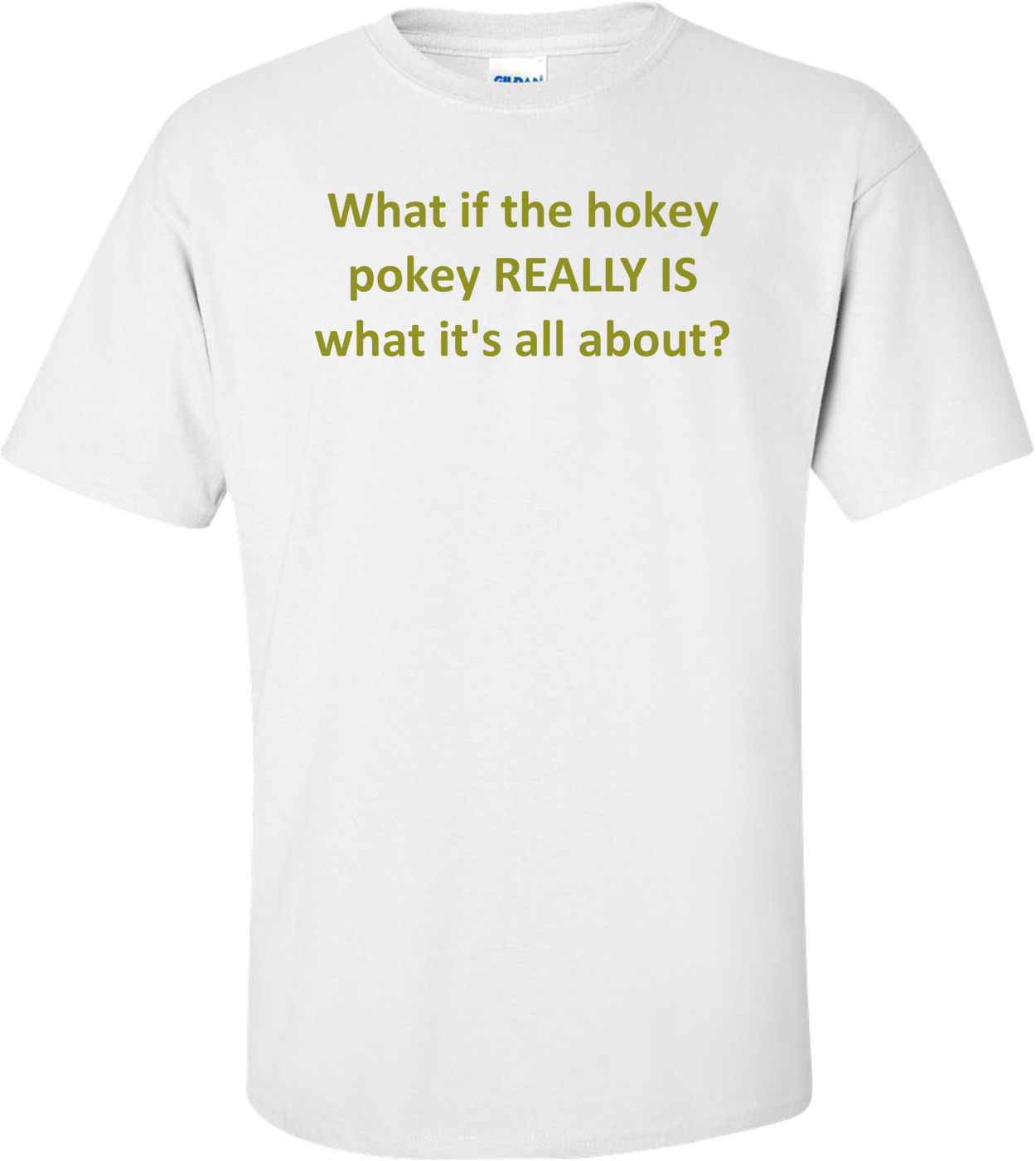 What if the hokey pokey REALLY IS what it's all about? Shirt