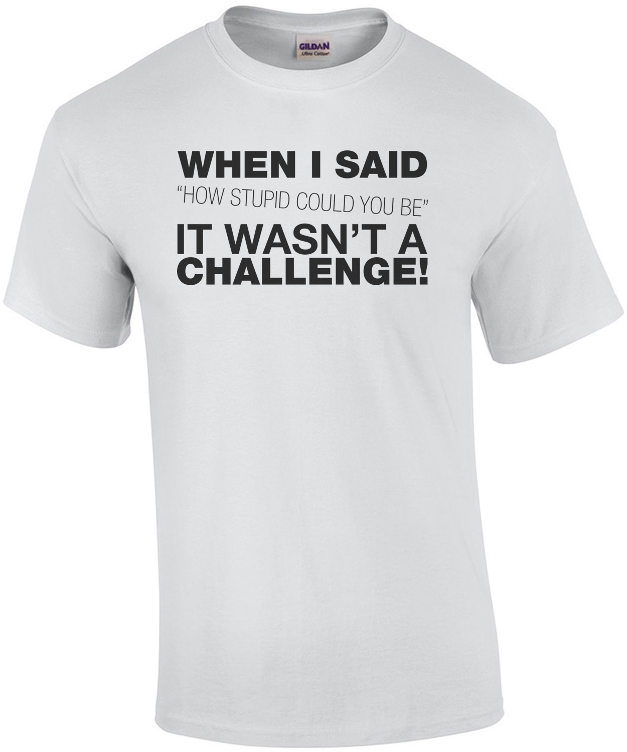 When I Said How Stupid Could You Be... T-Shirt