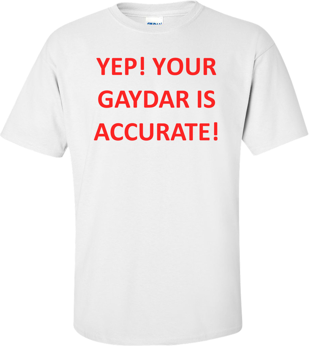 YEP! YOUR GAYDAR IS ACCURATE! Shirt