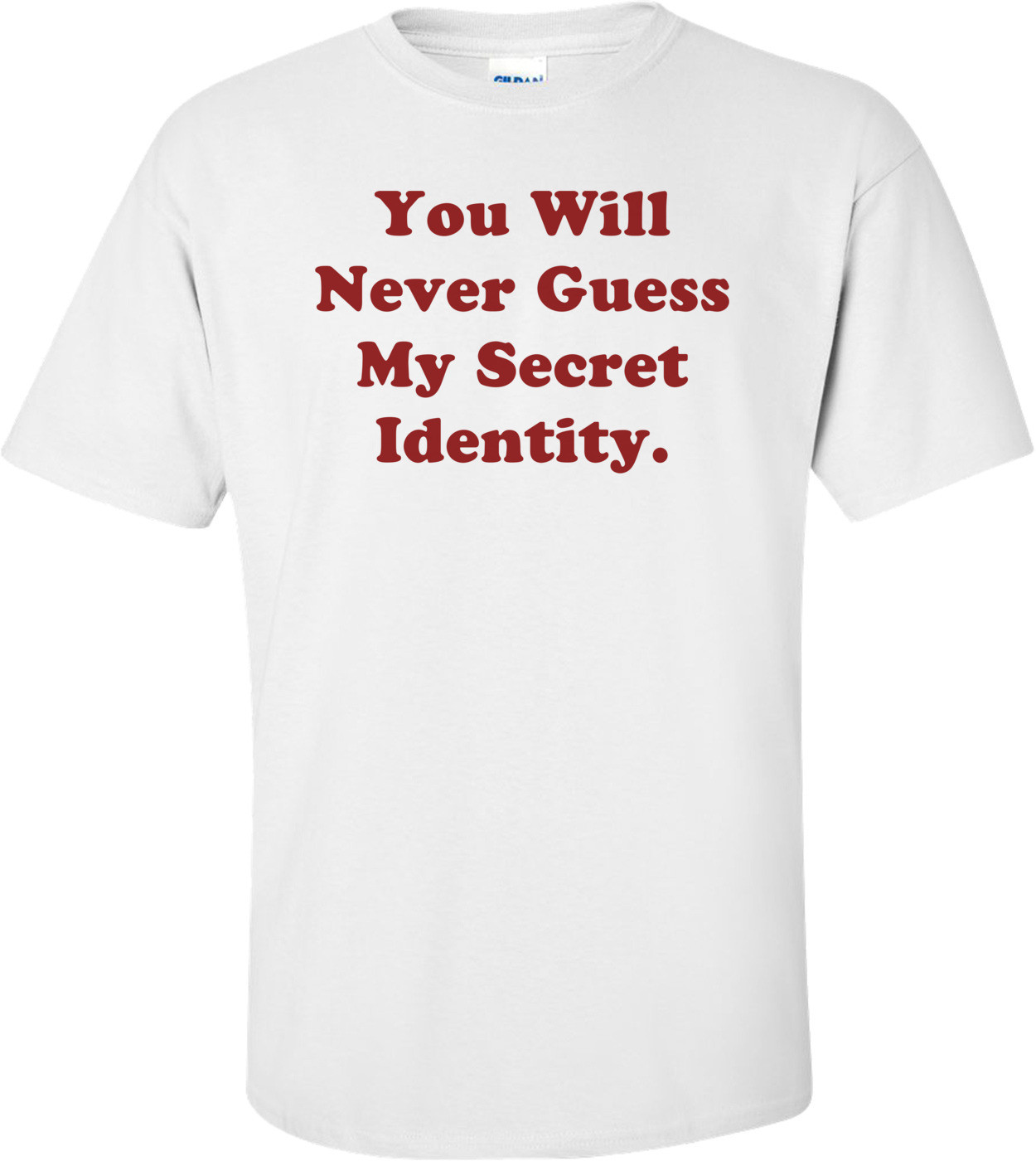 You Will Never Guess My Secret Identity. Shirt