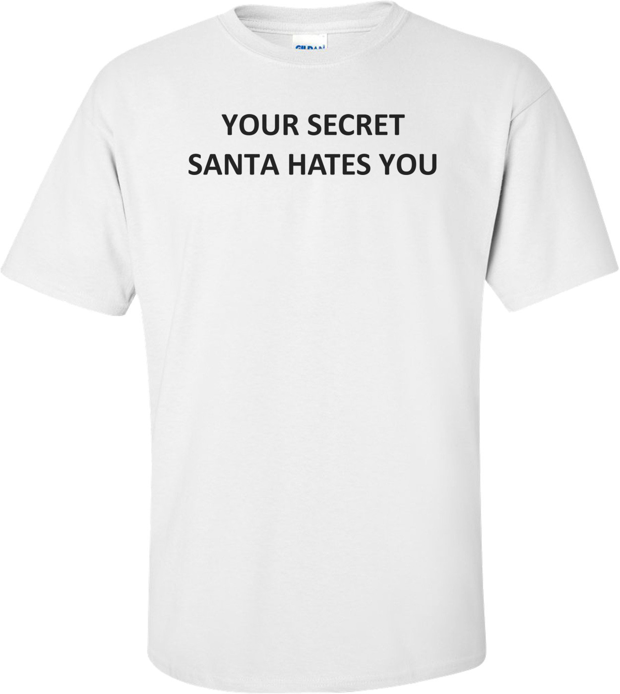YOUR SECRET SANTA HATES YOU Shirt