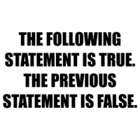 THE FOLLOWING STATEMENT IS TRUE. THE PREVIOUS STATEMENT IS FALSE. Shirt