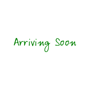 Arriving Soon - Maternity Shirt