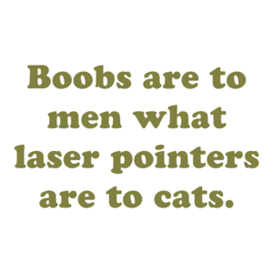 Boobs are to men what laser pointers are to cats. Shirt