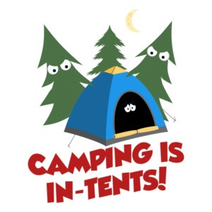 Camping Is In Tents. Funny Pun T-Shirt