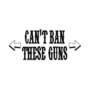 Cant Ban These Guns T-Shirt