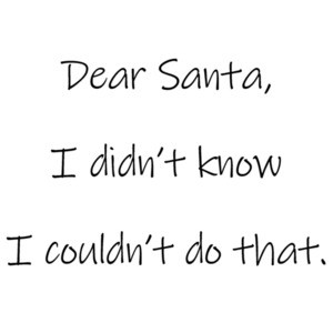 Dear Santa, I didn't know I couldn't do that. Christmas T-Shirt