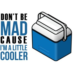 Don't Be Jealous Just Because I'm A Little Cooler T-Shirt