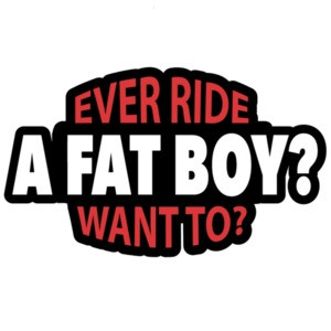 Ever ride a fatboy? want to? Biker T-Shirt