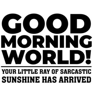 Good morning world! Your little ray of sarcastic sunshine has arrived - funny sarcastic t-shirt