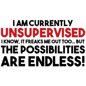 I AM CURRENTLY UNSUPERVISED. I KNOW, IT FREAKS ME OUT TOO. BUT THE POSSIBILITIES ARE ENDLESS! Shirt