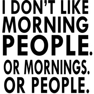 I don't like morning people. Or mornings. Or people. T-Shirt