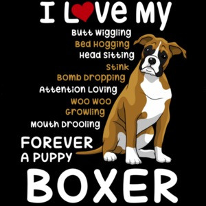 I love my boxer - boxer t-shirt