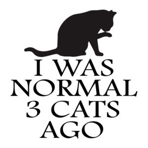 I was normal 3 cats ago - funny cat t-shirt