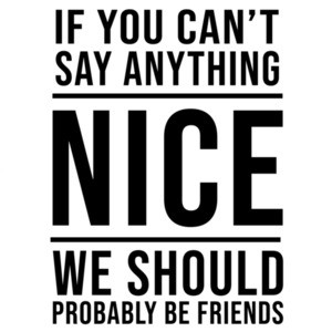 If you can't say anything nice - We should probably be friends - sarcastic t-shirt