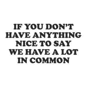 If You Don't Have Anything Nice To Say Then We Have A Lot In Common T-Shirt