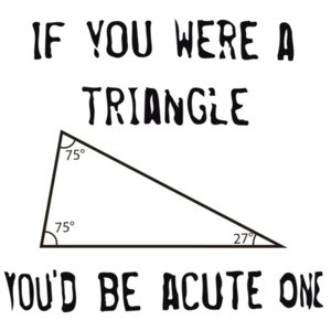If you were a triangle you'd be acute one. Funny T-Shirt