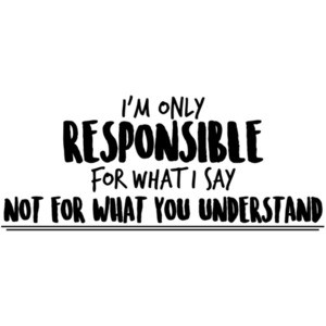 I'm only responsible for what I say not for what you understand - sarcastic t-shirt