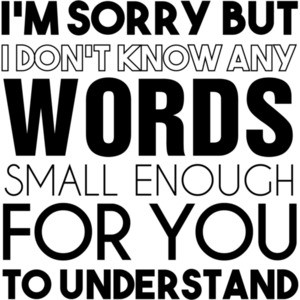 I'm sorry but I don't know any words small enough for you to understand. Funny sarcastic t-shirt