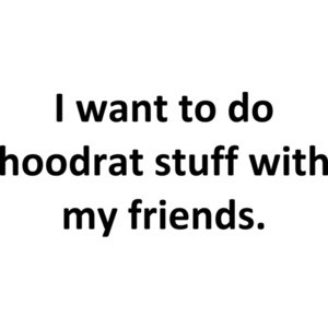 I want to do hoodrat stuff with my friends. Funny Internet  Shirt