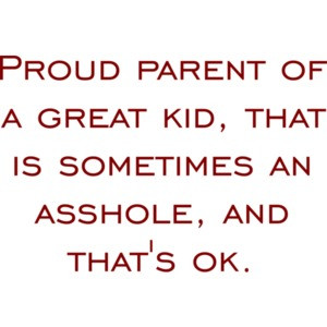 Proud parent of a great kid that is sometimes an asshole and that's ok - funny t-shirt