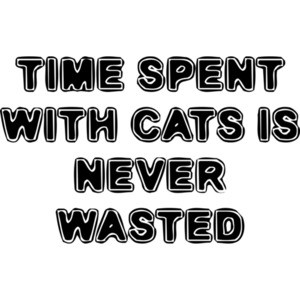 TIME SPENT WITH CATS IS NEVER WASTED Funny Shirt
