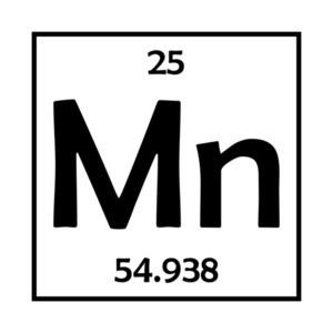 Mn Element - Minnesota T-Shirt