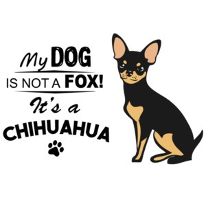 My dog is not a fox! It's a chihuahua - chihuahua t-shirt