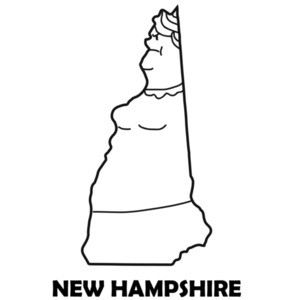 New Hampshire Funny T-Shirt
