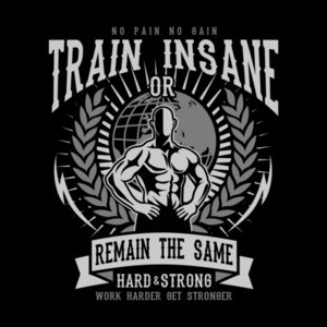 No Pain No Gain Train Insane Or Remain The Same Working Out Exercise T-Shirt