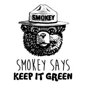 Smokey says keep it green - smokey the bear t-shirt