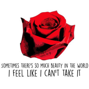 Sometime's there's so much beauty in the world I feel like I can't take it - American Beauty - 90's T-Shirt