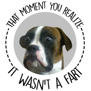 That moment you realize it wasn't a fart - funny dog t-shirt