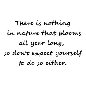 There is nothing in nature that blooms all year long, so don't expect yourself to do so either. Inspirational T-Shirt