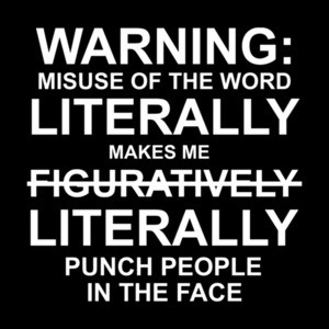 Warning: misuse of the word literally makes me punch people in the face - funny t-shirt