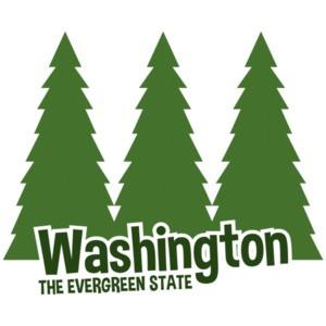 Washington - The evergreen state - washing t-shirt