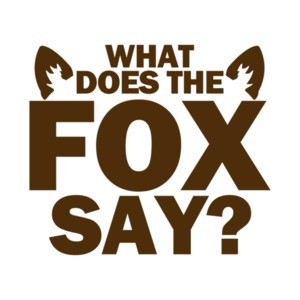 What Does the Fox Say Funny Shirt